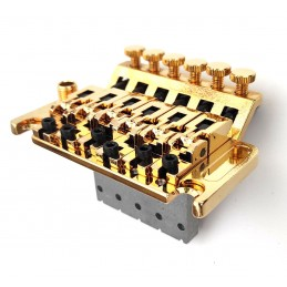 Gold FLoyd Rose Double...