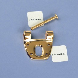 Gold TOWNER Hinge Plate...