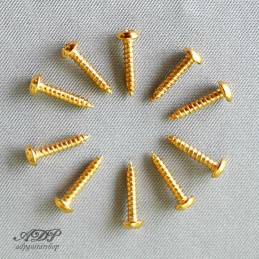 10 Gold Screws 2.1x9,5mm...