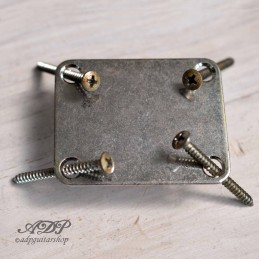 Gotoh Nickel aged Neck plate