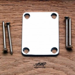 Neck Plate with 4 screws...