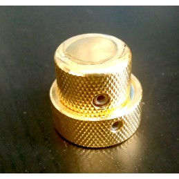 Gold Double Concentric dome...