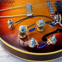 preWired Control Kit and harness Gibson style